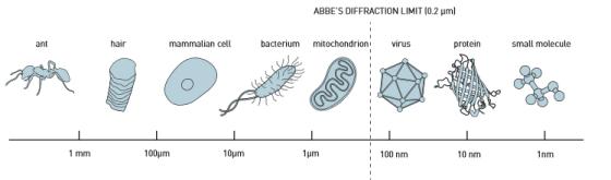 诺贝尔化学奖深度解析 打破光学显微极限